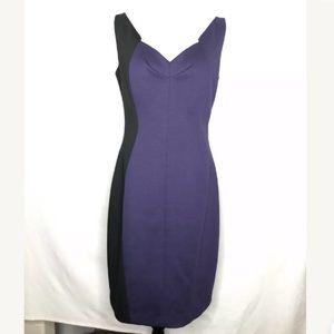Tahari Colorblock Sheath Dress Zip Back